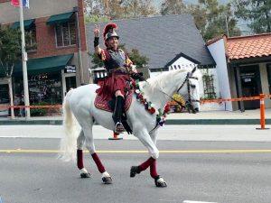 5-27 Memorial Day Parade -horse