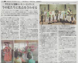The Japanese Daily sun